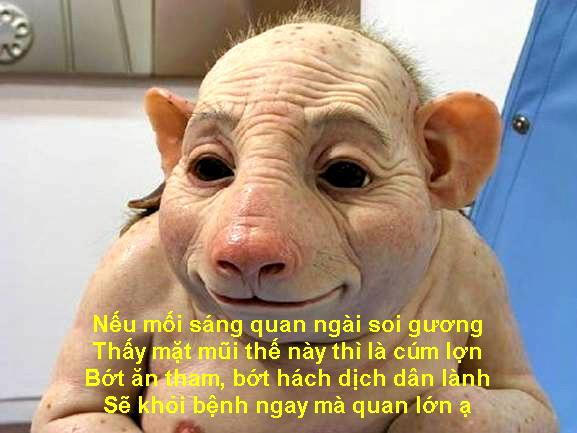 H1N1 (2)